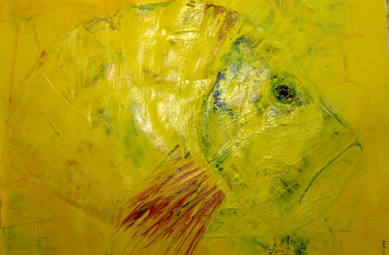 Acryl  Gelber Barsch 29 x 25 cm  Privatbesitz