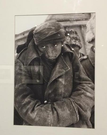 ⑤マルチメディア・アート博物館における展示会の写真