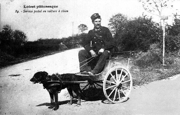 Service postal en voiture à chien