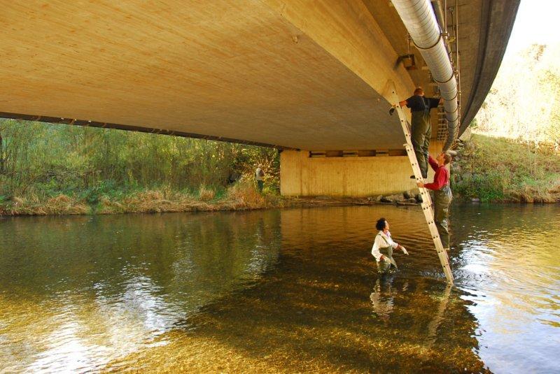 Wasseraselprojekt © LBV Miesbach
