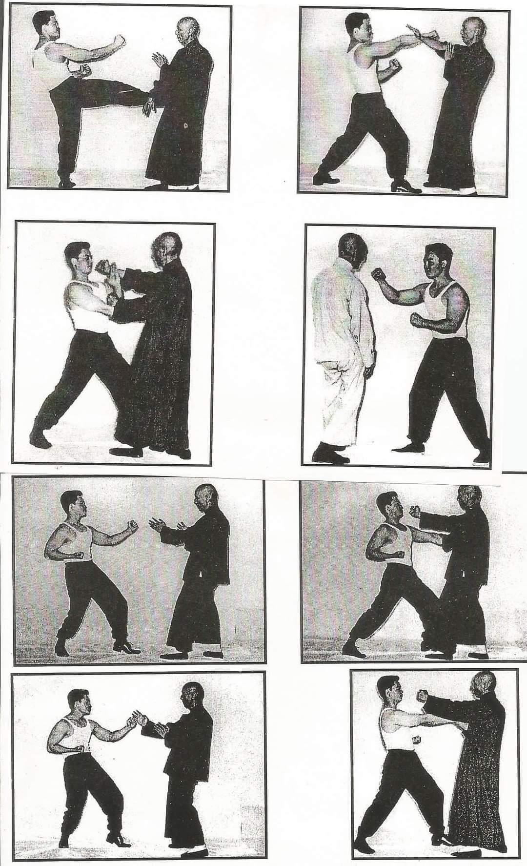Ip Man Wing Chun Techniken
