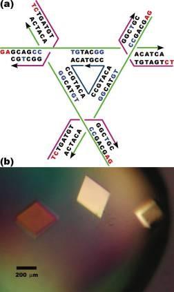 Construction de réseaux périodiques en 3 dimensions (cristaux).