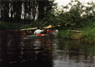 Böhme Pfingsten 1994