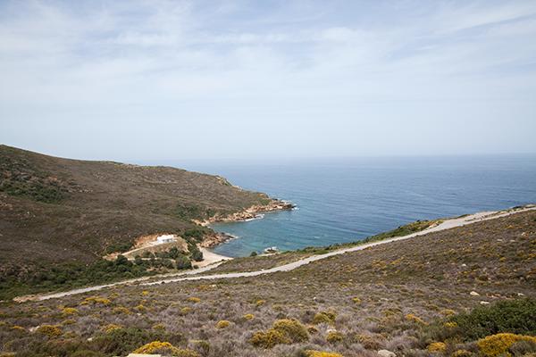 armiriki-strandalonia