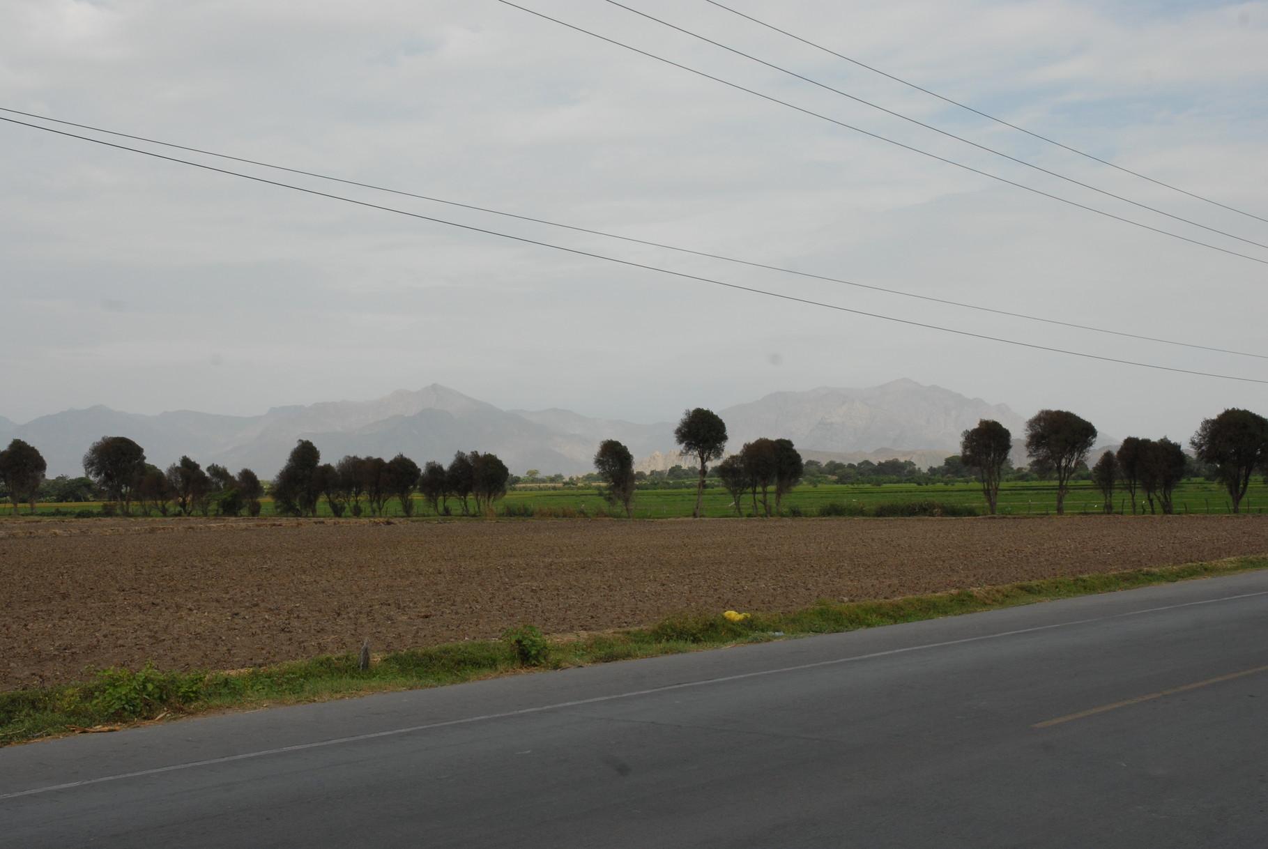 Kurz vor Chiclayo ... Landscape ...