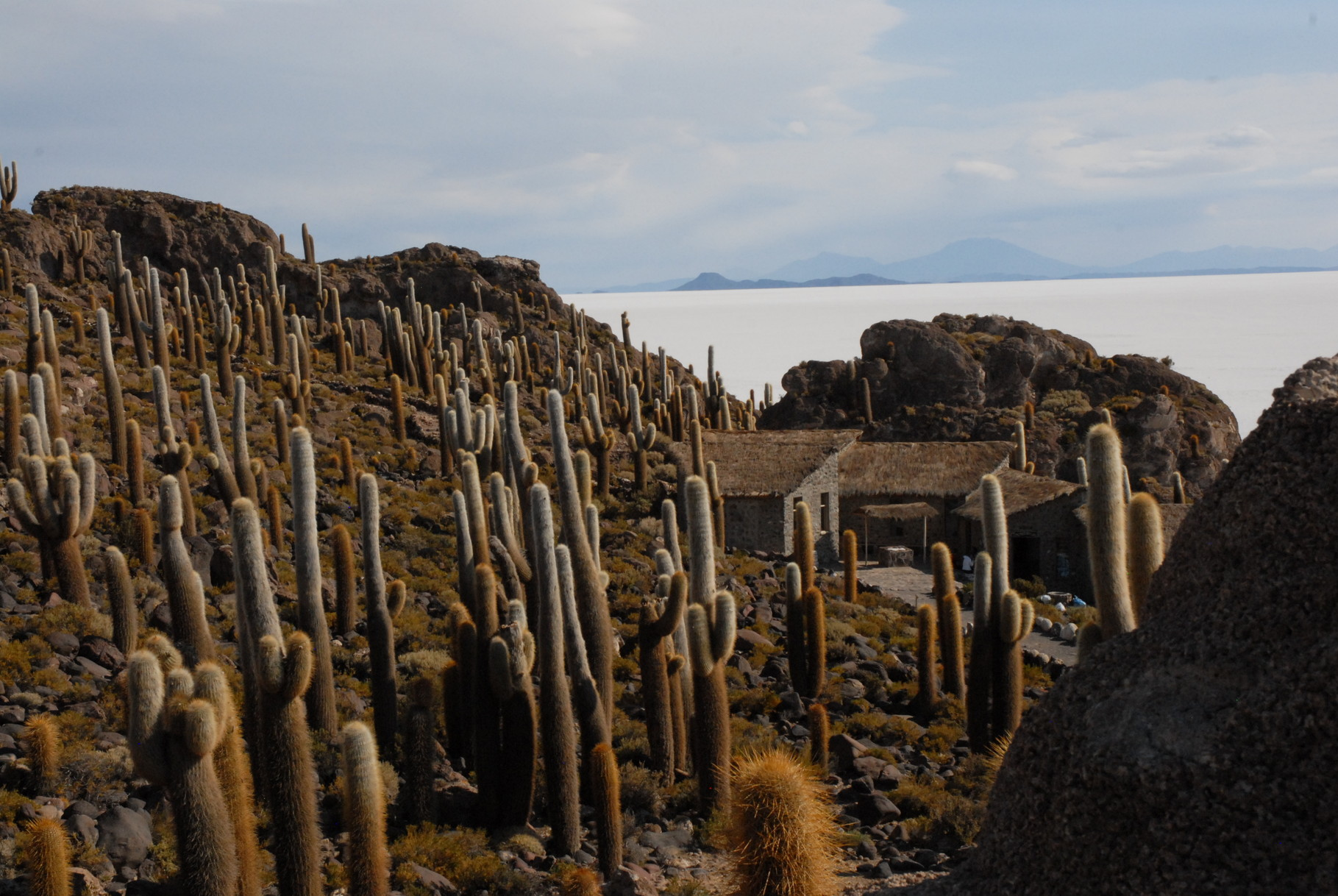 Auf der Isla Inkahuasi