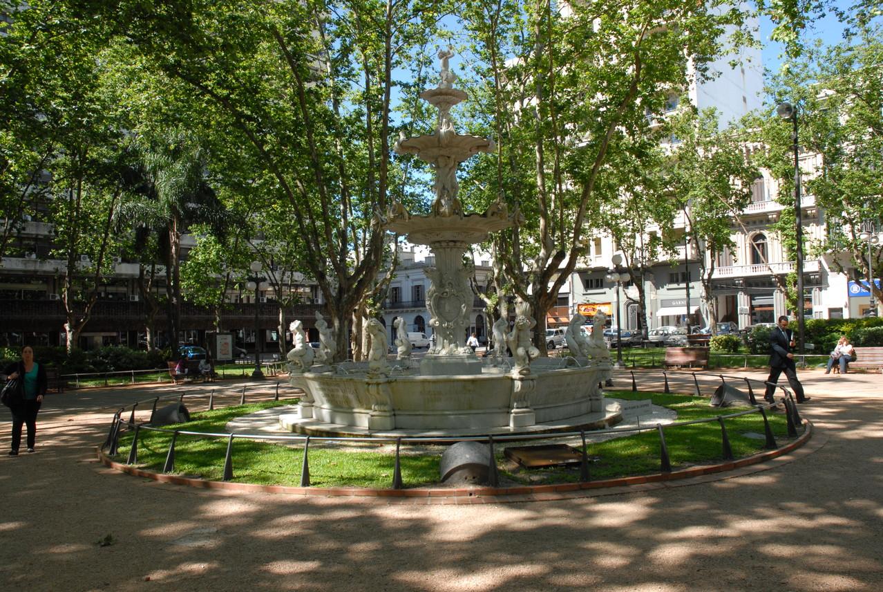Viel Bäume in ganz Montevideo