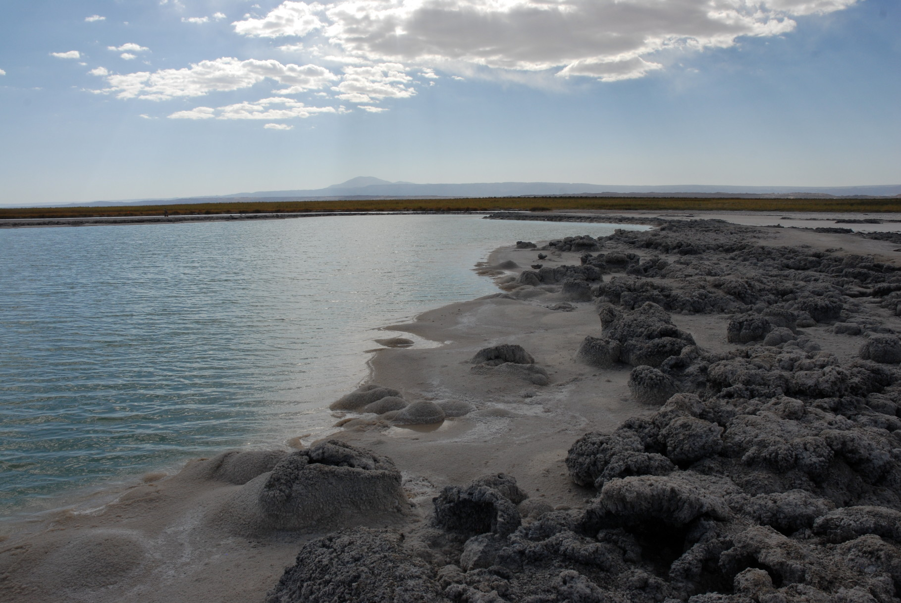 Die Laguna Cejar mit dicker Salzplatte