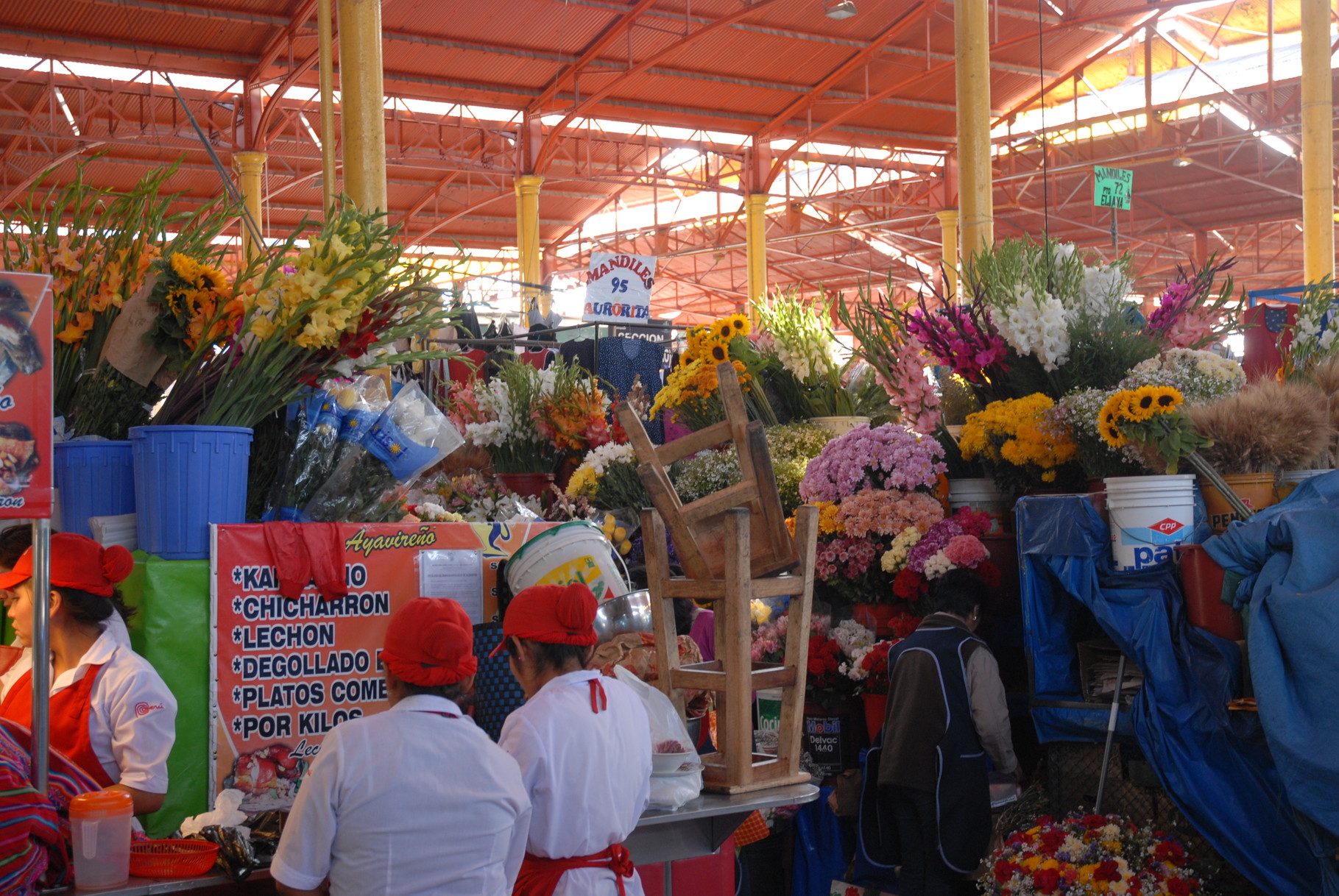 Bunter Blumenreigen