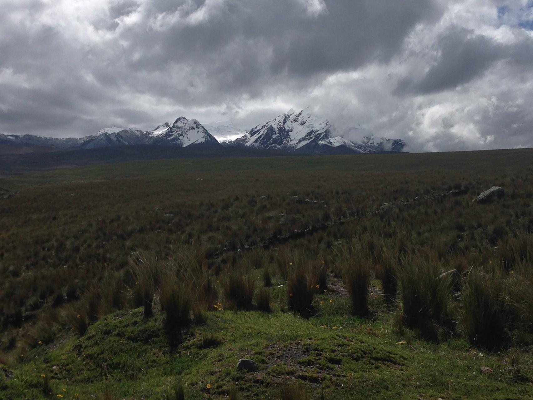 Blick auf die Sechstausender der Cordillera Blanca