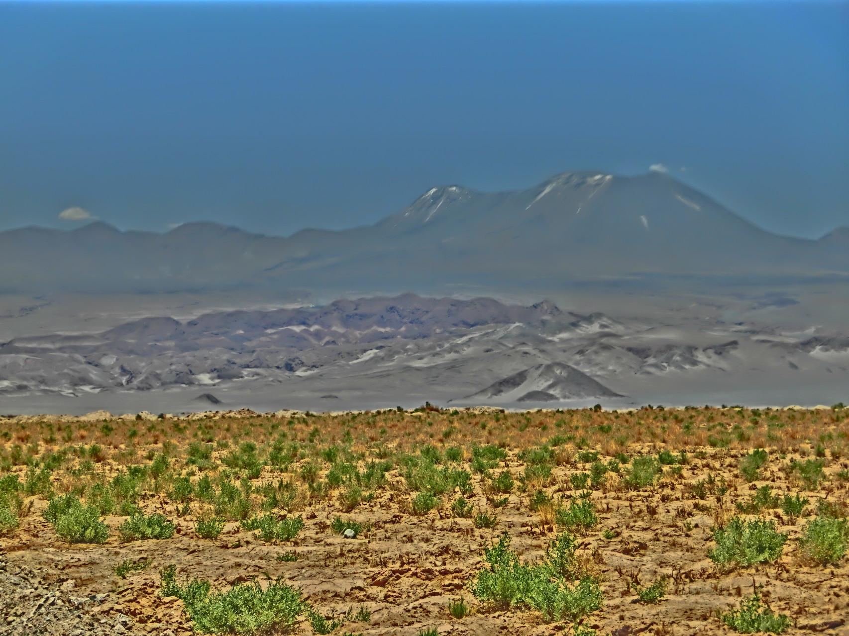 Blick über die Wüste hinweg in die Berge