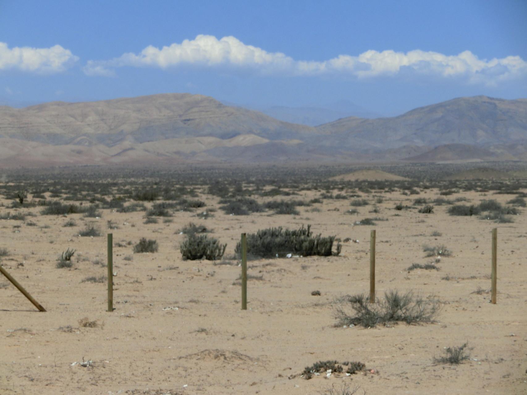 Wüste ...