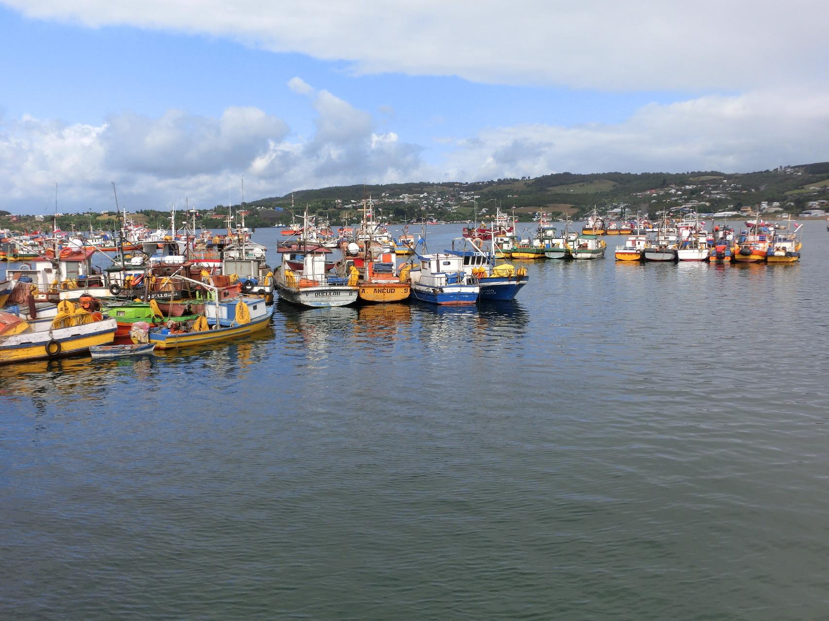 Im Fischereihafen von Quellón