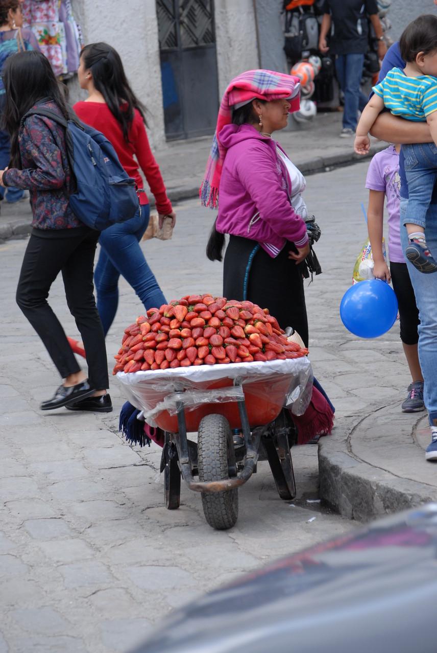 Wieviel Erdbeeren wollens denn? Ein Körbchen oder eine Schubkarre voll?