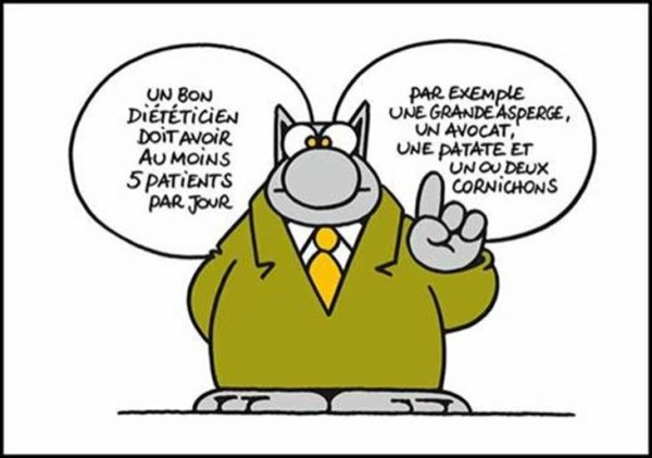 Le Chat ©Philippe Geluck