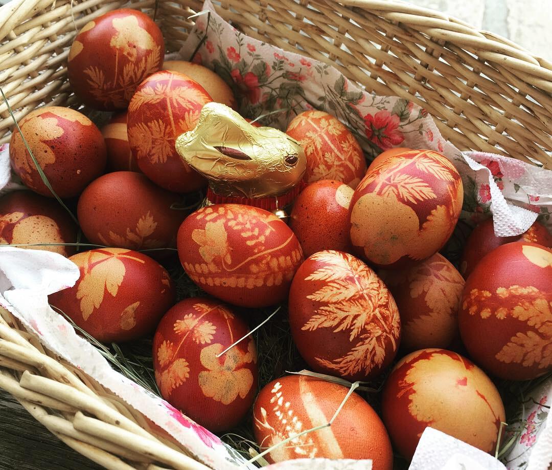 ...16: Gefärbte Eier für unsere Ostergäste