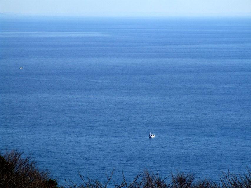 相模湾を見下ろす風景
