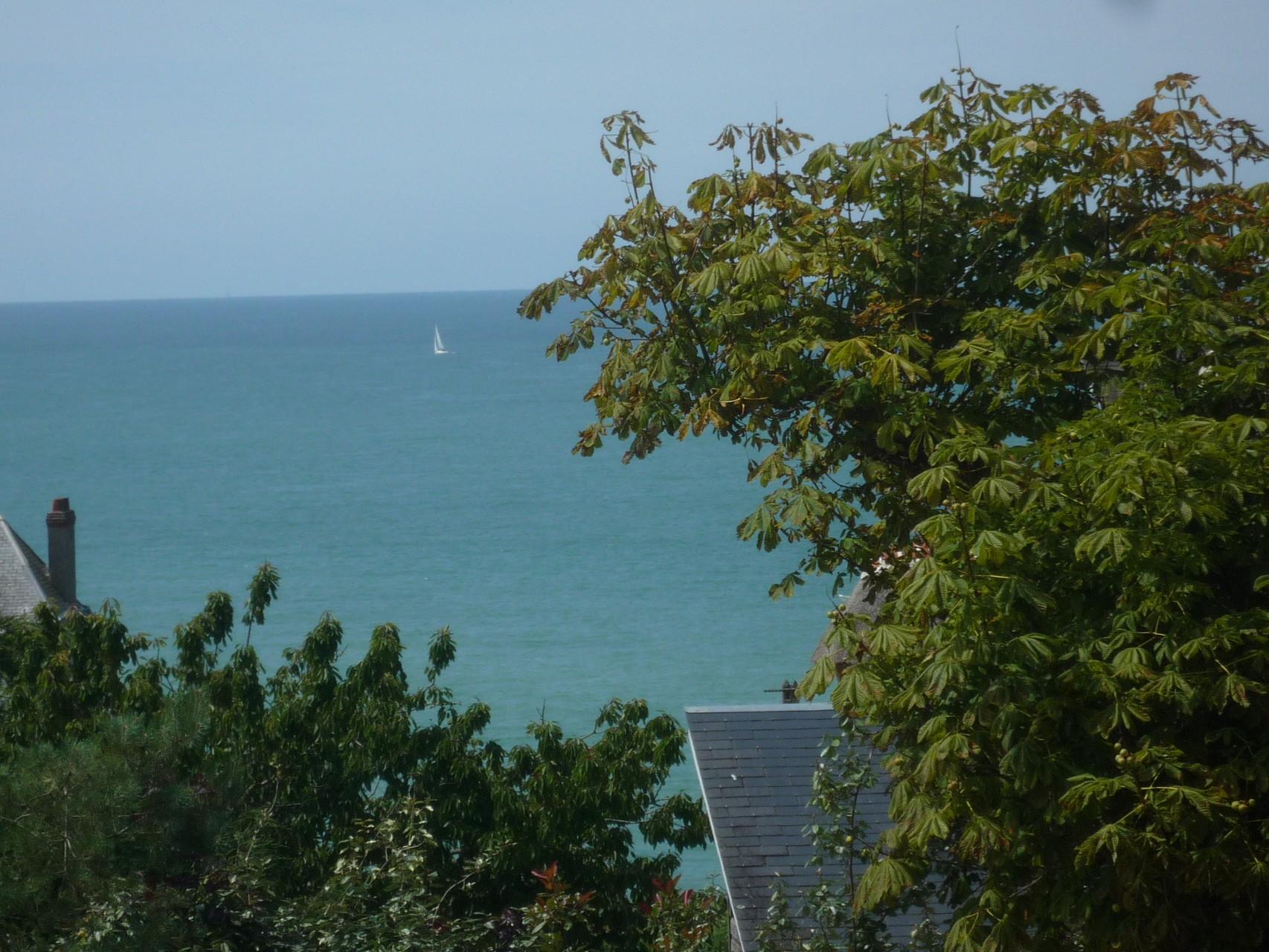 Vue sur la mer et les arbres, depuis la terrasse
