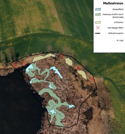 Maßnahmenplan zur Biotoppflege am Neusee im Lkr. Schweinfurt