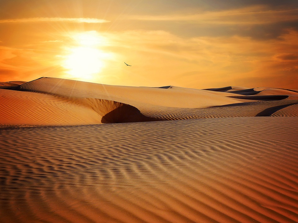 Desert-www.aidant-services.fr