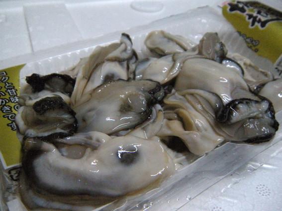 ※  写真 ↑ は 生食用牡蠣 です / その日の仕入れにより異なります。御容赦ください