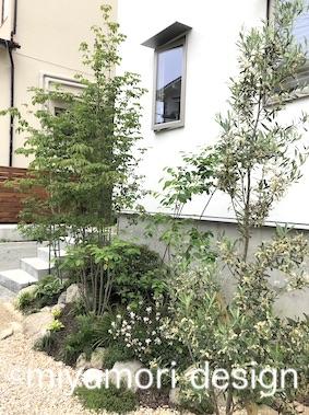 午前中に日当たりのよい前庭の一部には、オリーブやローズマリー、タイム等のハーブが合います