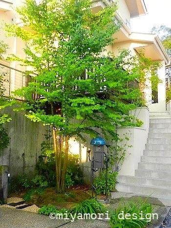 新築工事に伴う、庭と外構のデザイン:施工後の外構写真