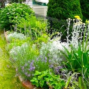 ミヤモリデザイン事務所:庭の施工例「花壇や門まわりの植栽」