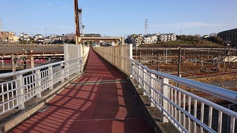 陸橋は線路を跨いでいます。