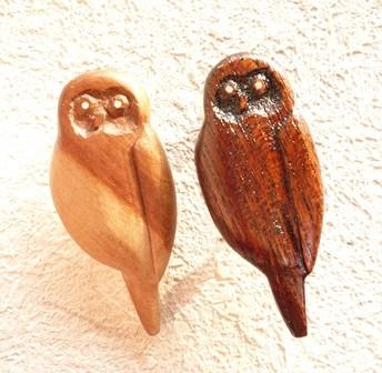 フクロウ2種