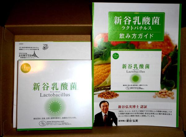 新谷乳酸菌ラクトバチルス
