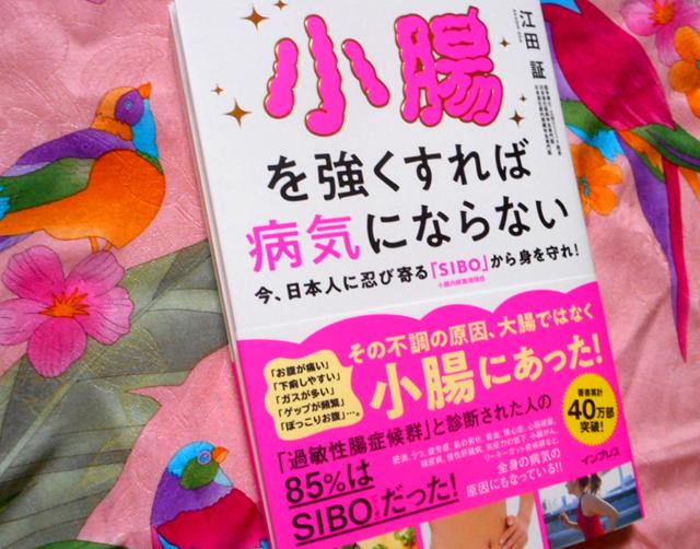 『小腸を強くすれば病気にならない 今、日本人に忍び寄る「SIBO」から身を守れ!』