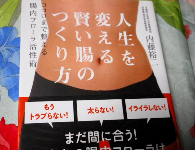 内藤裕二『人生を変える賢い腸のつくり方』