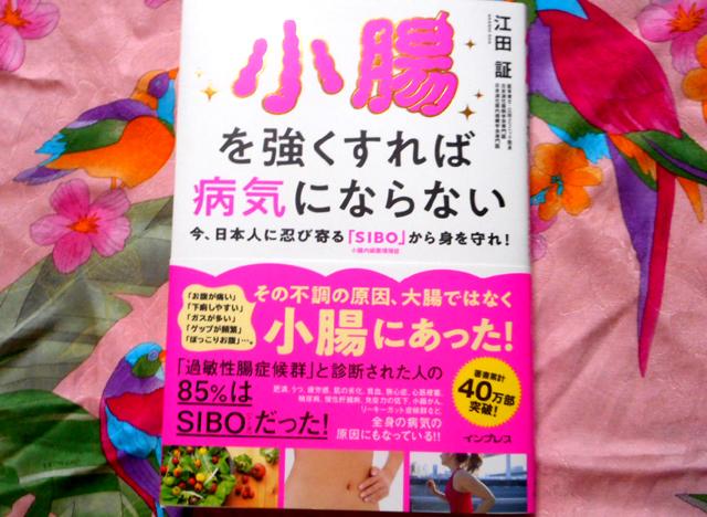 江田証『小腸を強くすれば病気にならない』