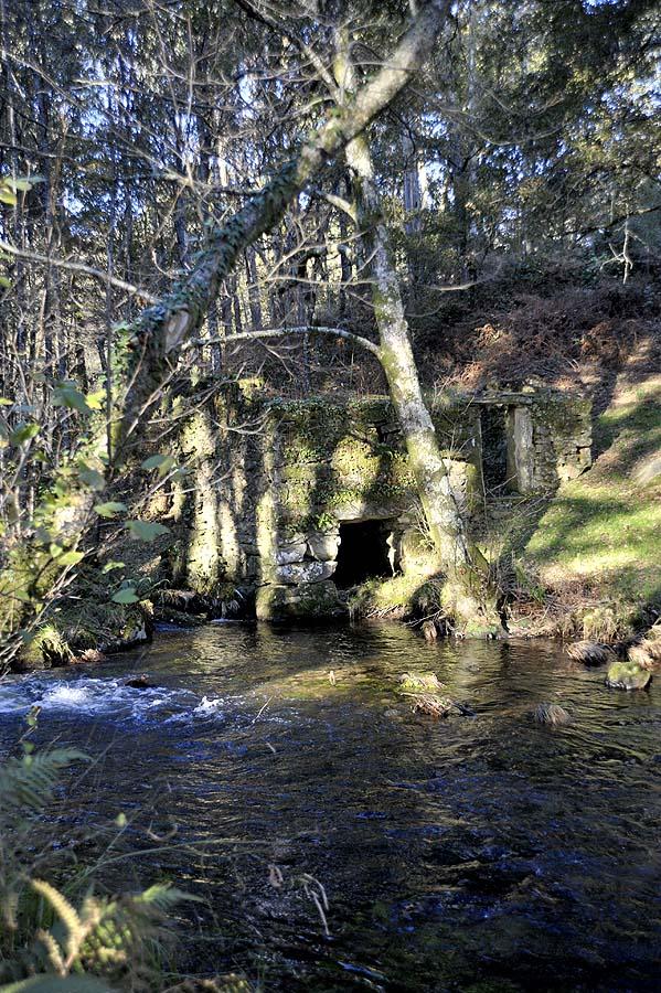 The Ferreira river