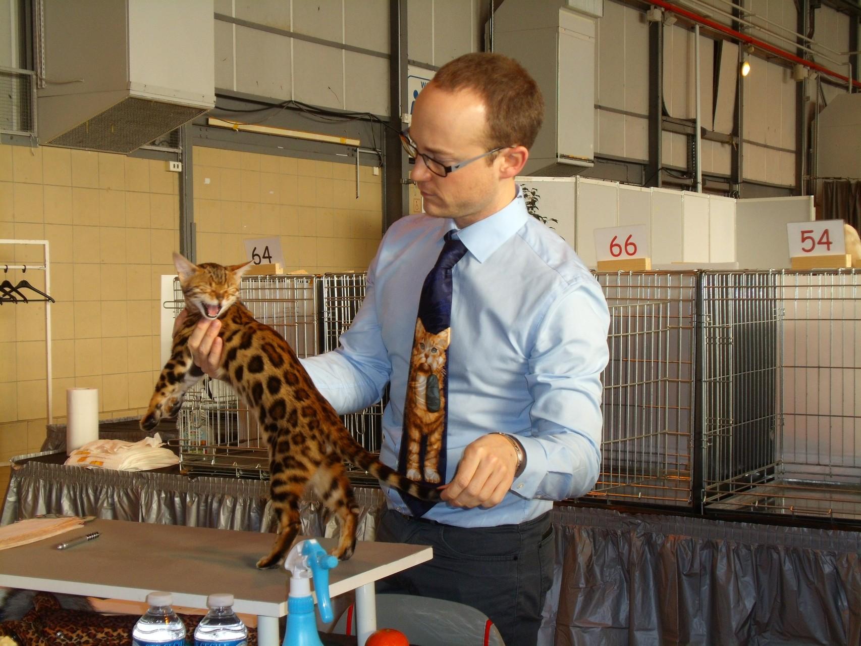 Exposicion felina Toulouse con Steven Corneille (juez SP) - 08-02-2014