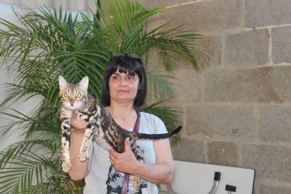Exposicion felina de Issoire (francia) abril 2015
