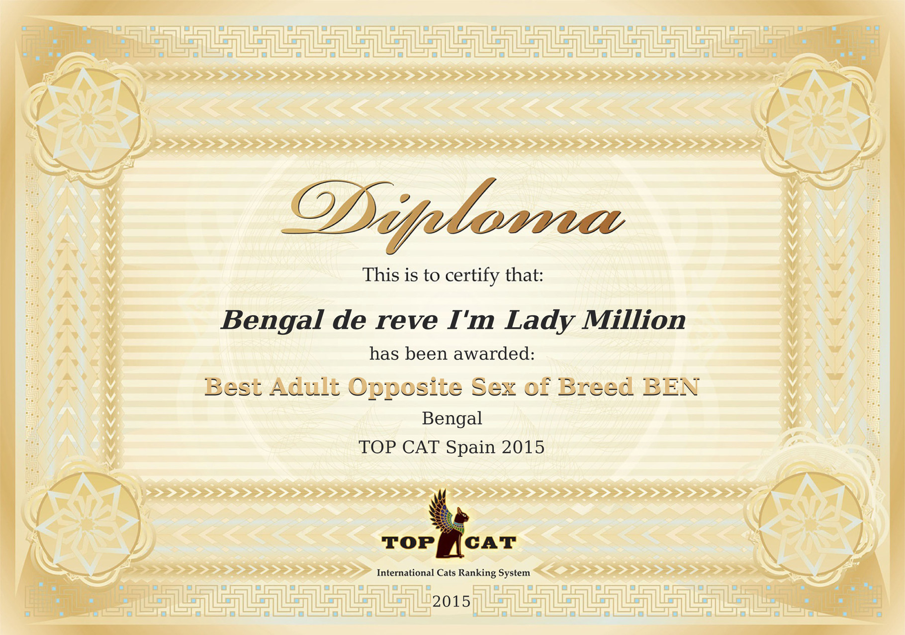 Best of breed BENGAL challenge Top Cat 2015 Espagne
