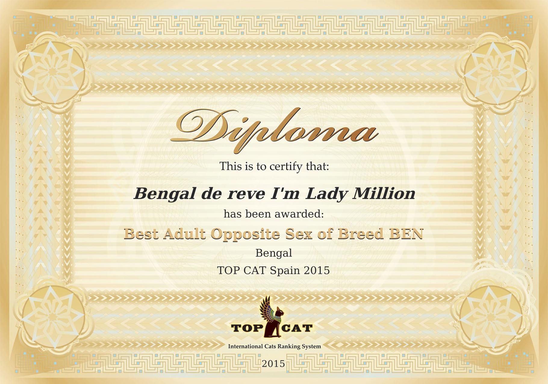 Raking Top Cat Mejor Bengal adulto sexo opuesto España 2015