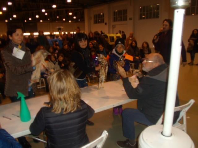 Exposition feline Terrassa (espagne) janvier 2015