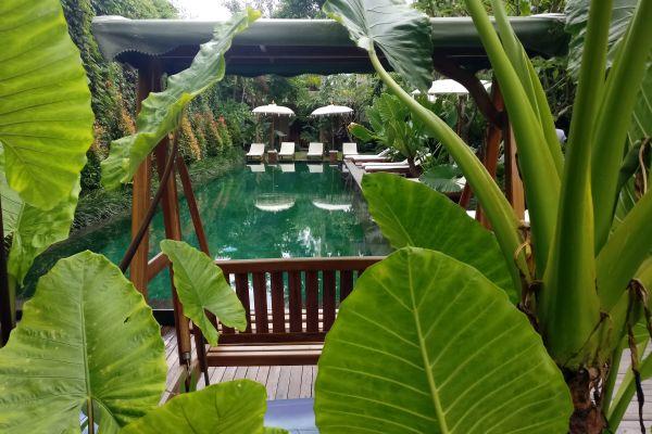 Hotel Sapodilla, grüne Oase in Ubud