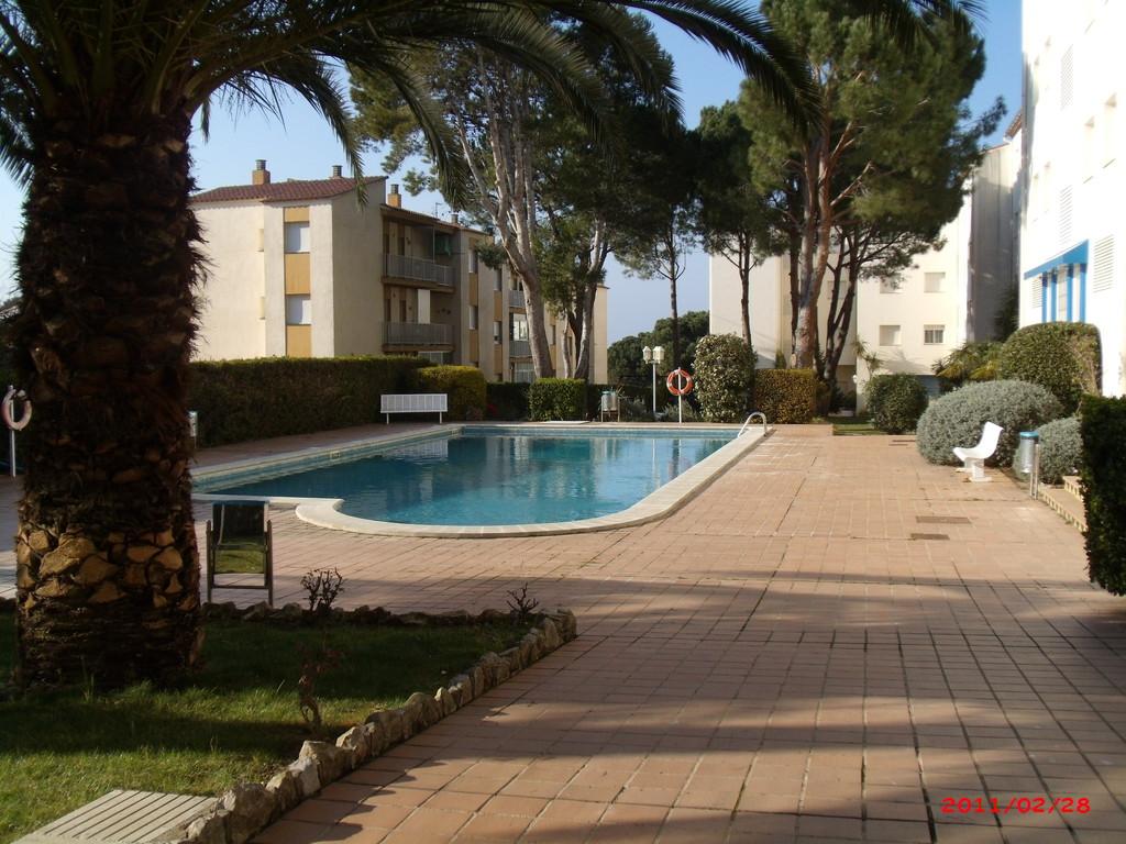 jardin piscine résidence magda park