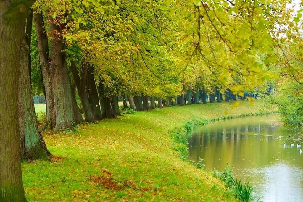 Herbst in der Grafschaft Bentheim