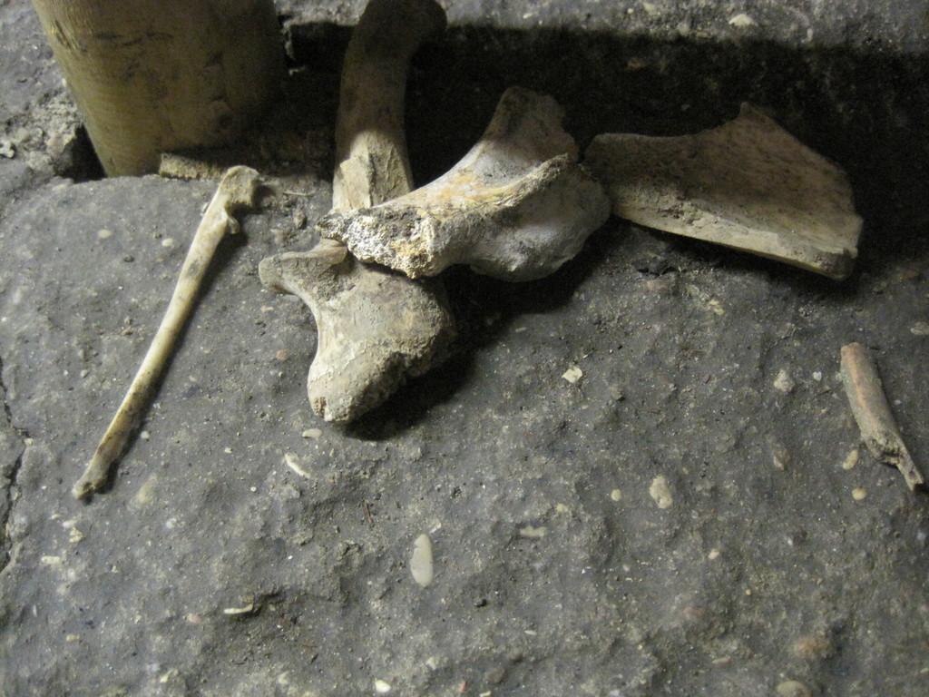 .... die Reste des letzten Neandertaler, oder eines Templers ! ? ...