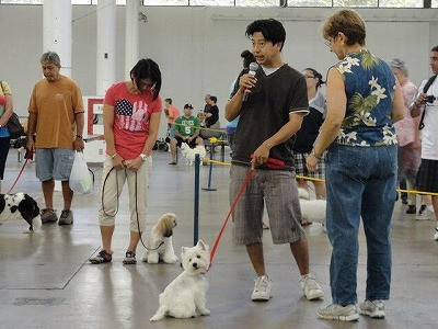 AKC Canine Good Citizenshi Test(家庭優良犬テスト)