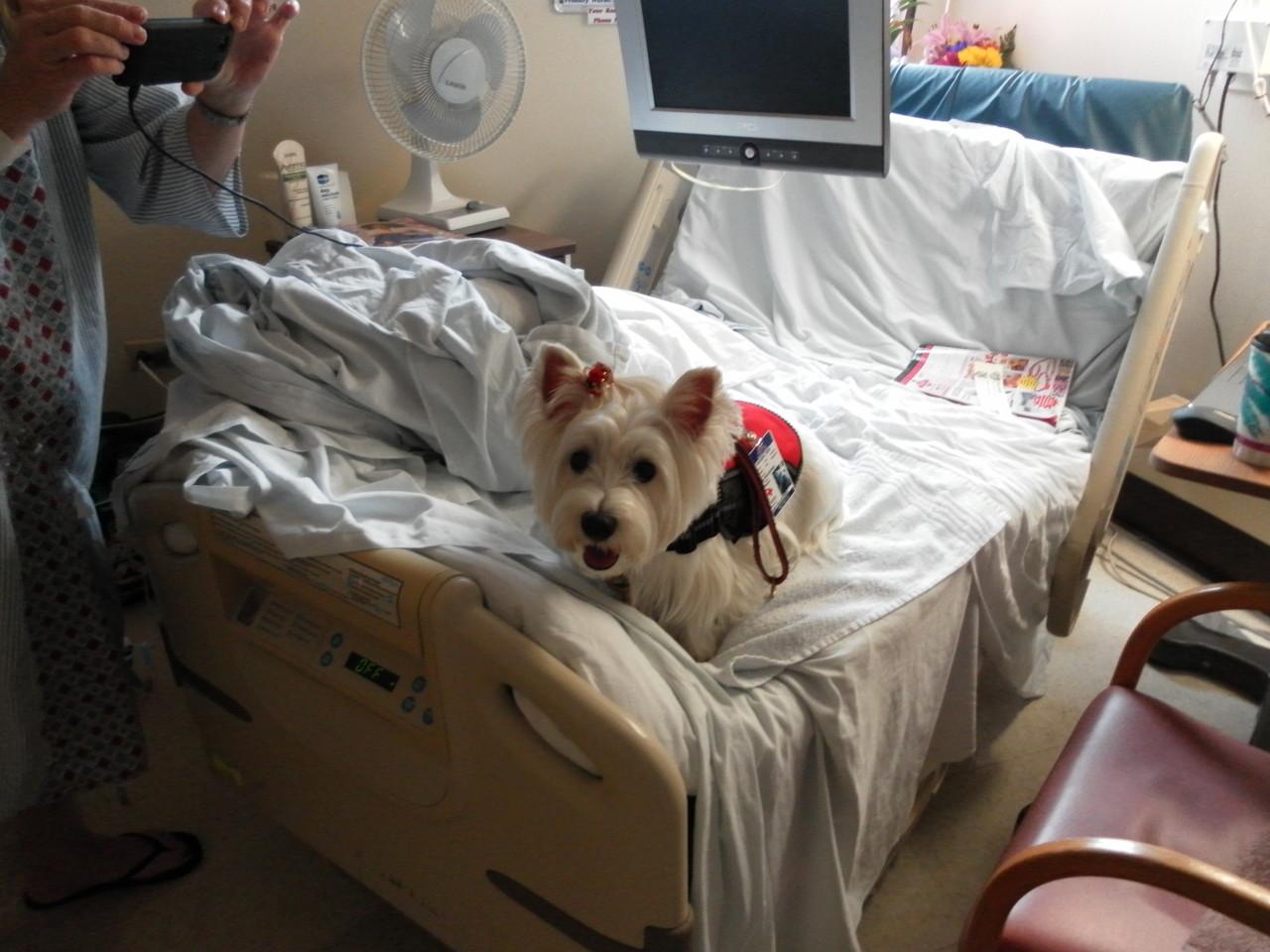 病院内の患者さんのベッドの上での撮影