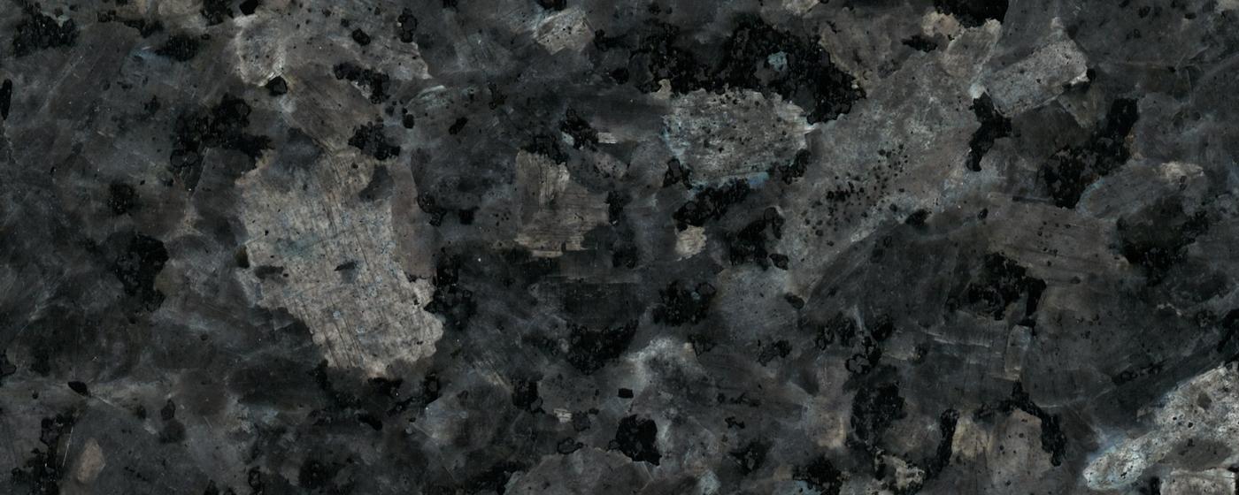 Labrador MTT