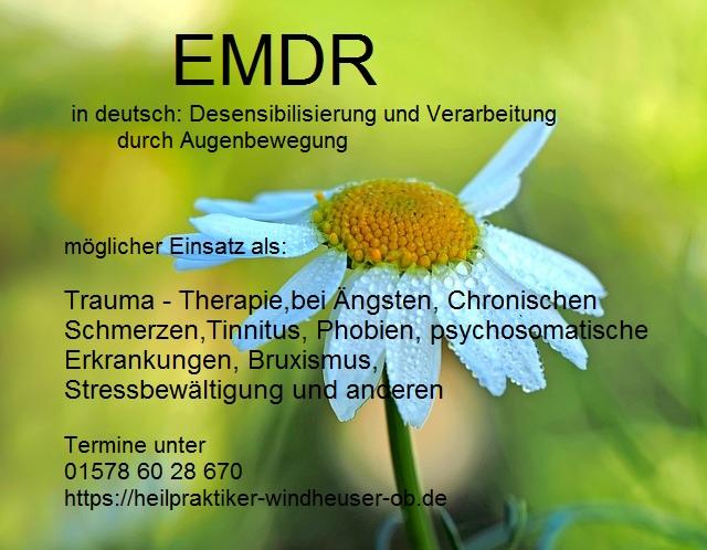 Margarithe vor grünem Hintergrund, Stress und Entspannung, EMDR, Trauma-Therapie, PTBS, Rosacea, Neurodermitis, Psoriasis, Psychotherapie