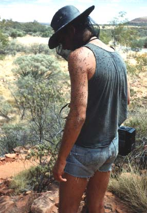 Its me. 1991 - Australia - Kings Canyon - 2.000.000 flies and 40 degrees celsius (104 degrees Fahrenheit)