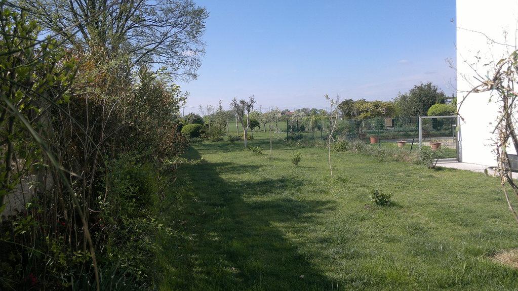 una veduta del giardino
